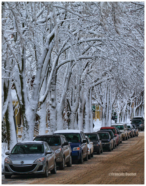 Une rue de la Ville de Québec après le passage d'une averse de neige.