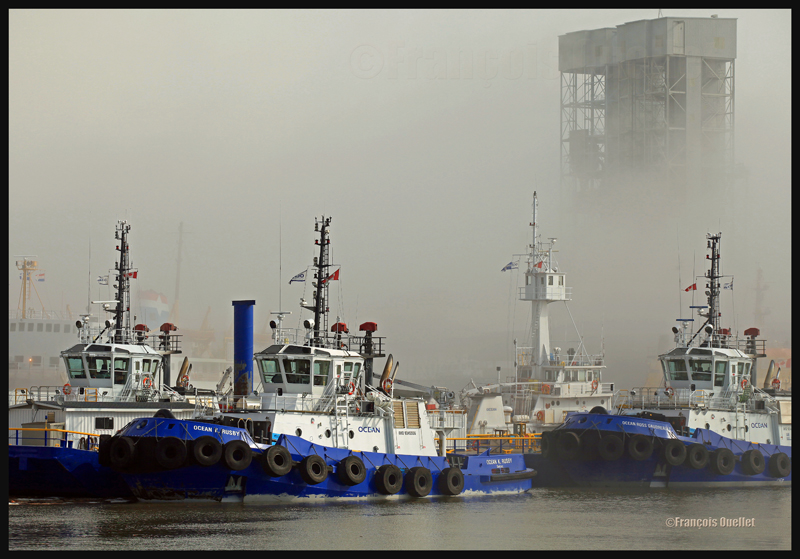 Les remorqueurs de la compagnie Ocean sont immobilisés par le brouillard dans le Bassin Louise à Québec en 2012