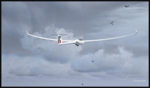 Un planeur DG-808S en vol avec les oiseaux (fsx)