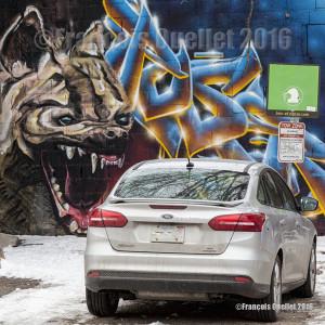 Photographie de rue à Toronto: l'amour au premier coup d'oeil!