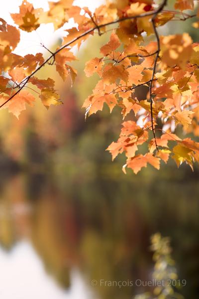 St-Gilles à l'automne