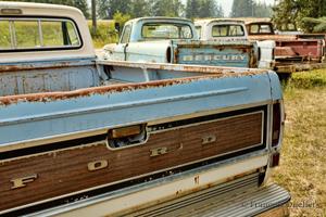 Vieux pick-up Ford et Ford Mercury le long de l'autoroute Yellowhead en Colombie-Britannique en 2014.