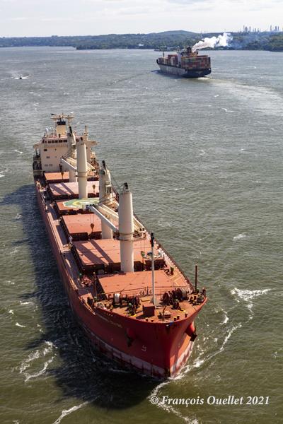 Les navires Federal Clyde et MSC Brianna sur le fleuve St-Laurent près du pont de Québec en 2021.