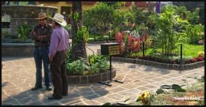 3884-San-Pedro-Guatemala-2014-web-copy