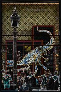 IMG_4212-ParisJPEGWebwatermark