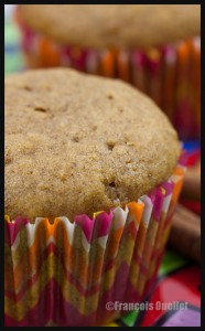 Muffins-pumpkin-and-cinnamon-web