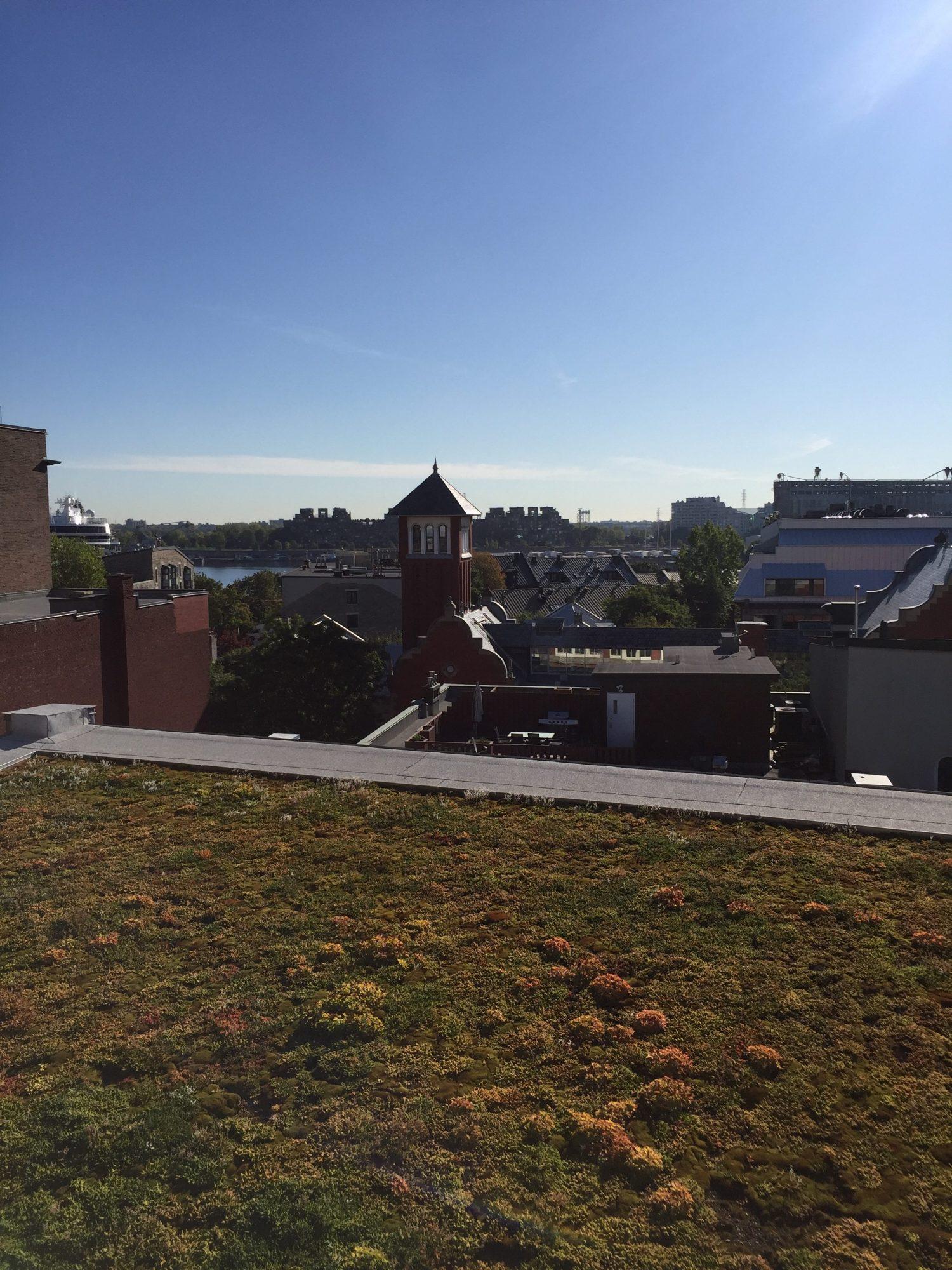 Toit plat vert Montreal Couvreur Emile Lelievre Ferblantier toit vert vieux Montréal
