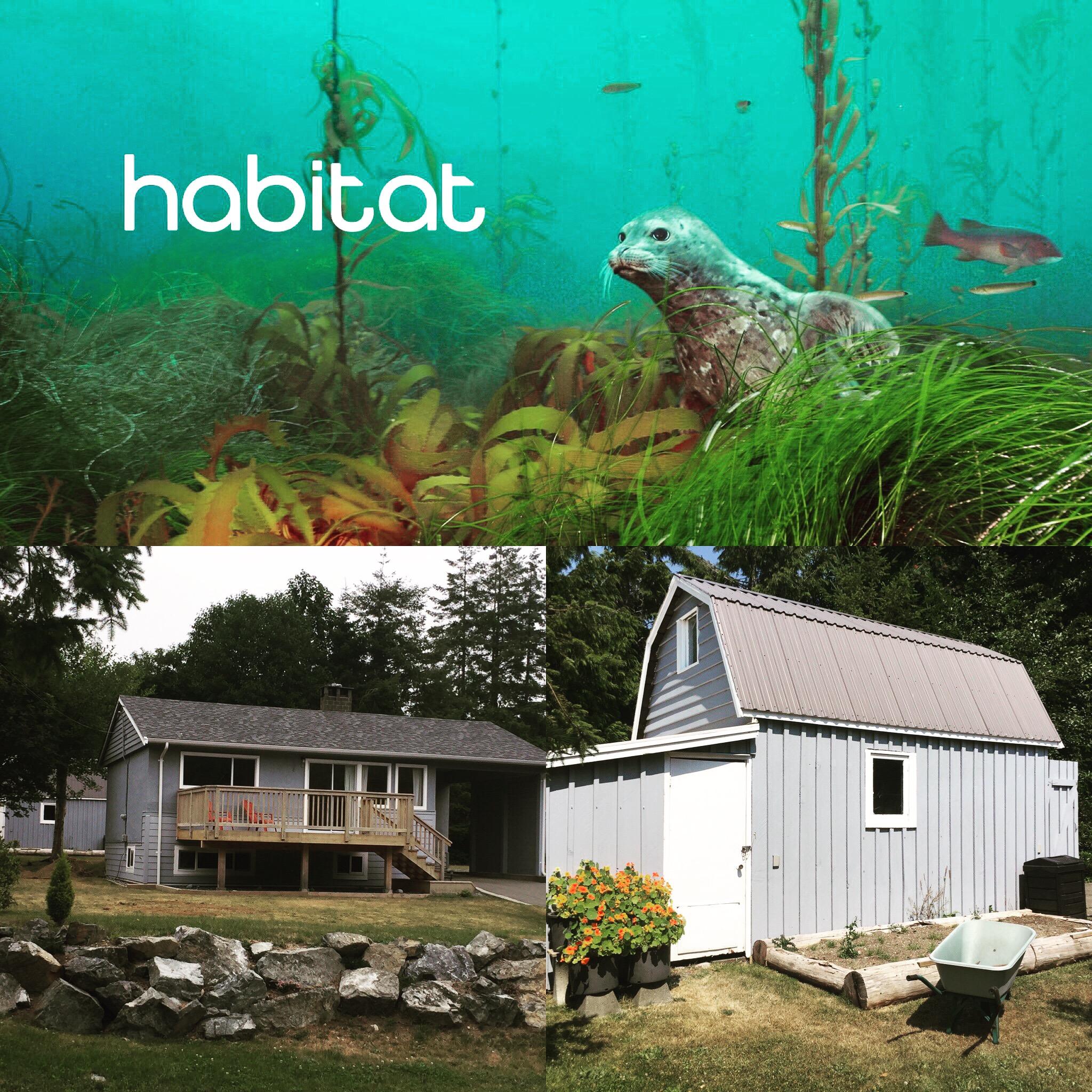 Habitat Ucluelet best ucluelet vacation rental