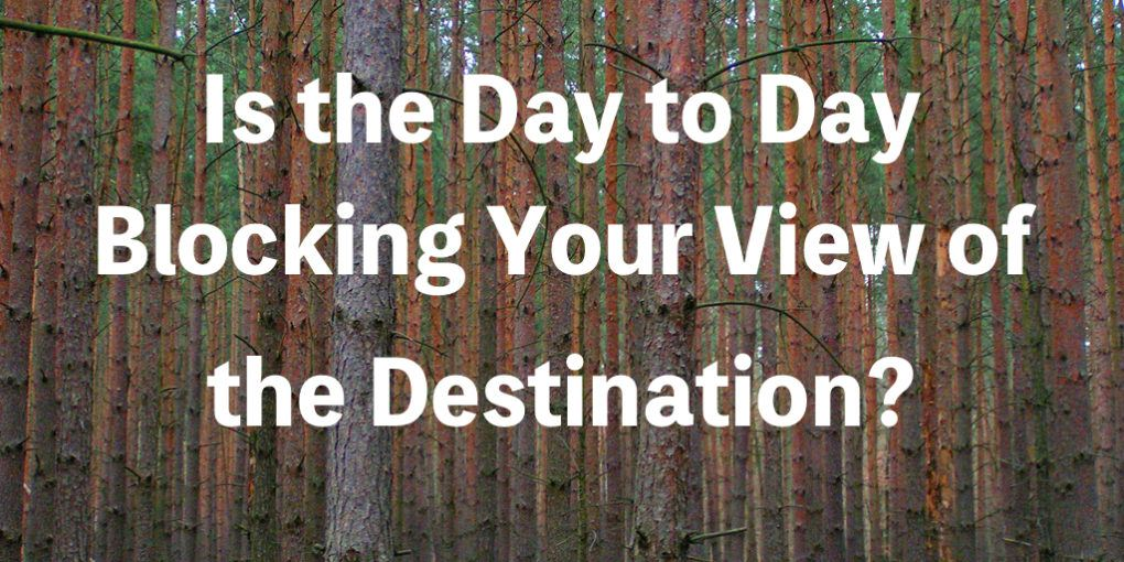 Image of a lot of trees blocking the view to the forest with text that says
