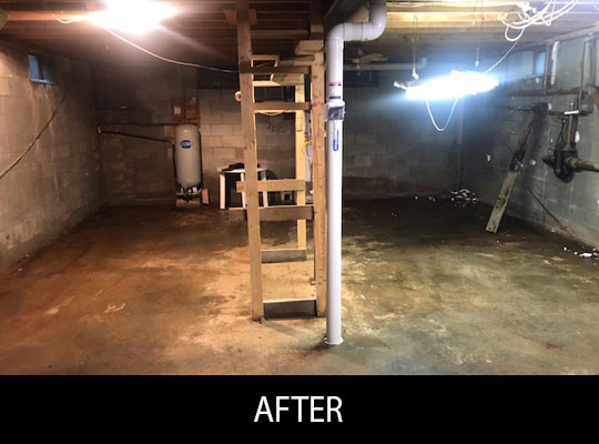 Before and After Photos of Full Service Clean Outs