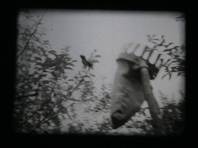 Film Still: Janusz Jaworski