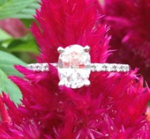 Trend Alert: Oval Engagement Rings   Engagement Ring Voyeur