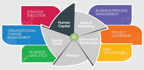 Thought Logic Service Matrix Human Capital