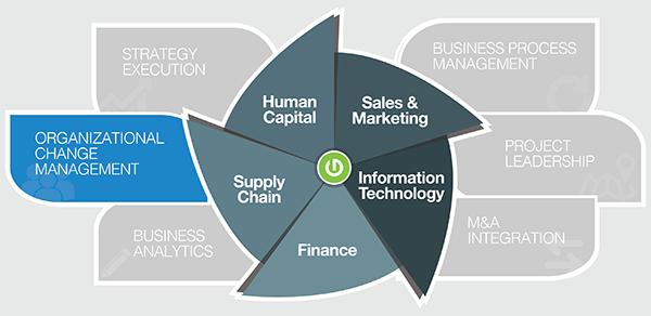 Thought Logic Service Matrix Organizational Change Management