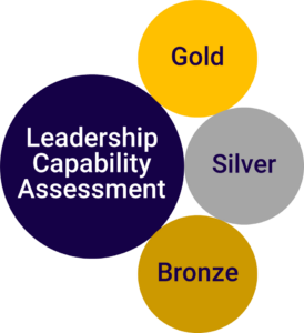 """A blue bubble with the text """"Leadership Capability Assessment"""" is accompanied by three smaller ones, labelled """"gold,"""" """"silver,"""" and """"bronze,"""" all coloured as per their labels."""