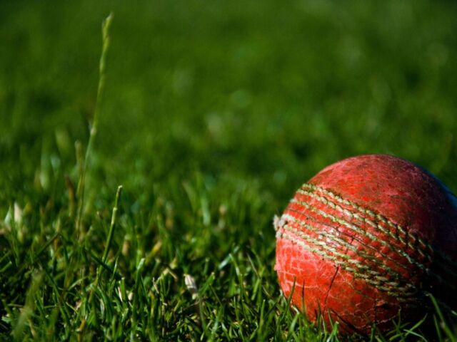 Close up of a cricket ball on a grassy field