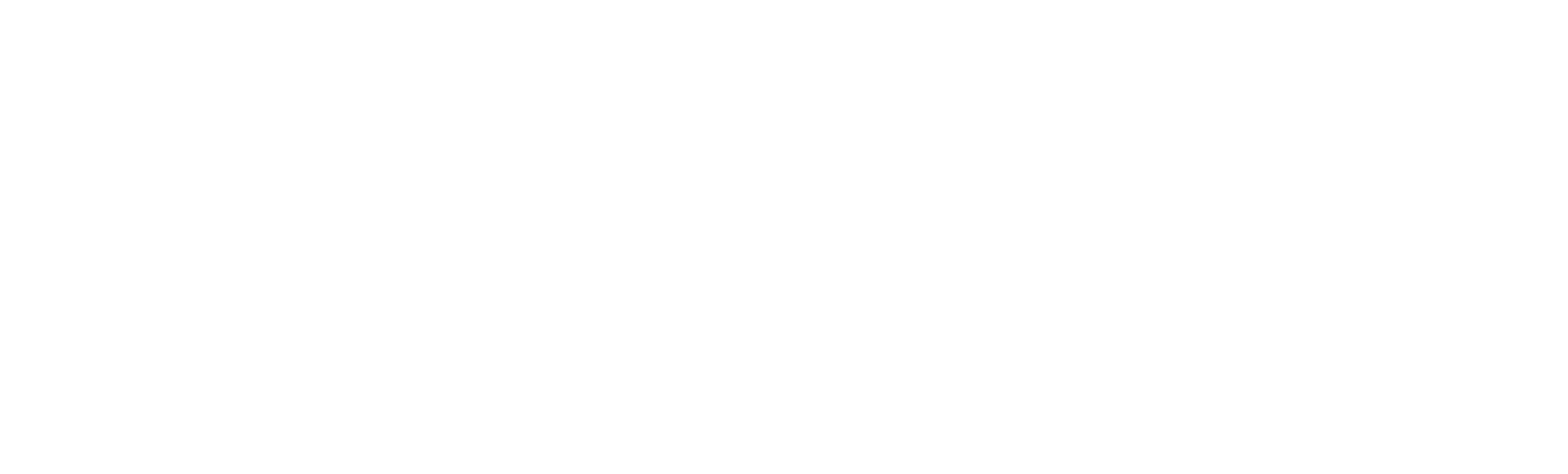 Truenorthaum Metrologie Systems
