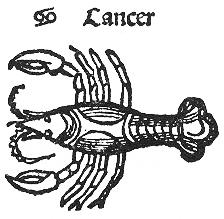 Cancer Kopie