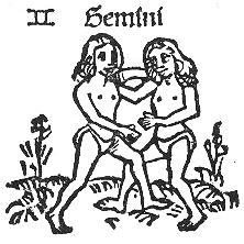 Gemini Kopie