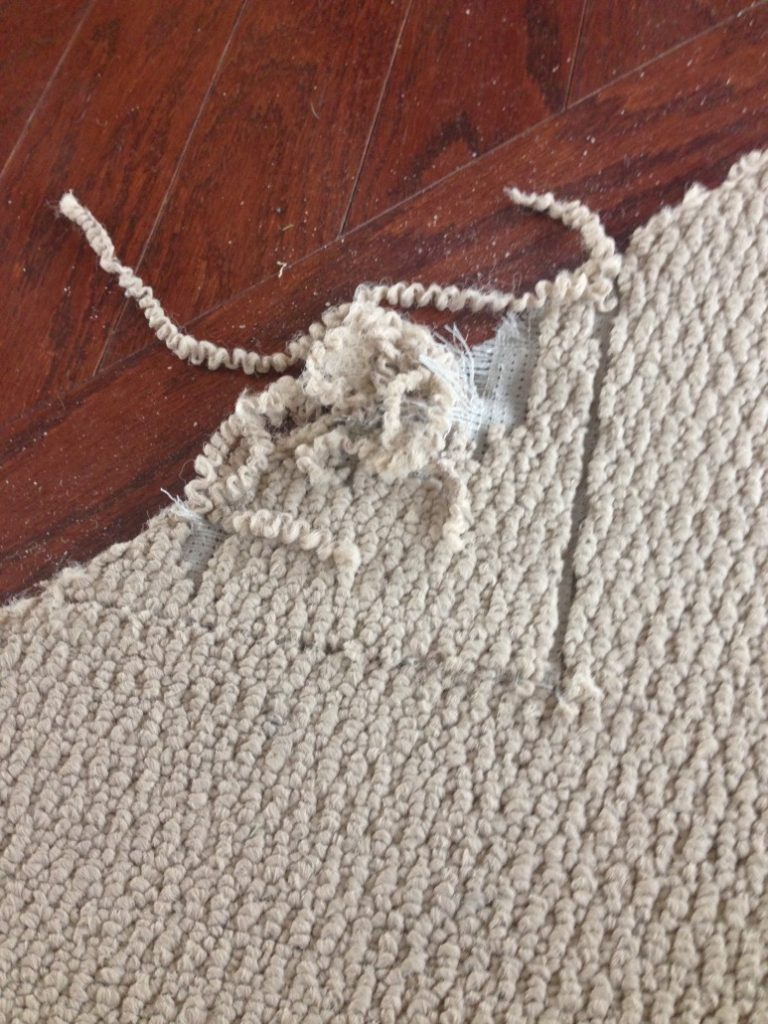 Carpet Repair Service Oak Brook, Illinois