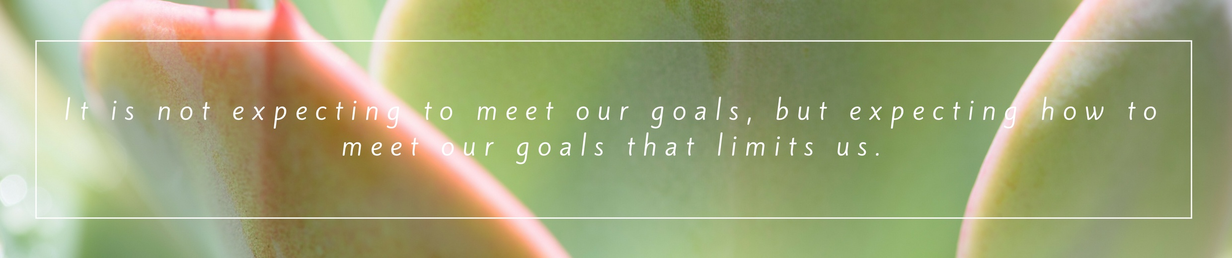 It is not expecting to meet our goals, but expecting how to meet our goals that limits us.