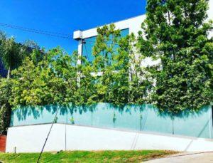 LA Elite Window Cleaning | Sunny Day | Clean Windows