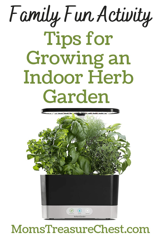 Indoor Herb Garden tips