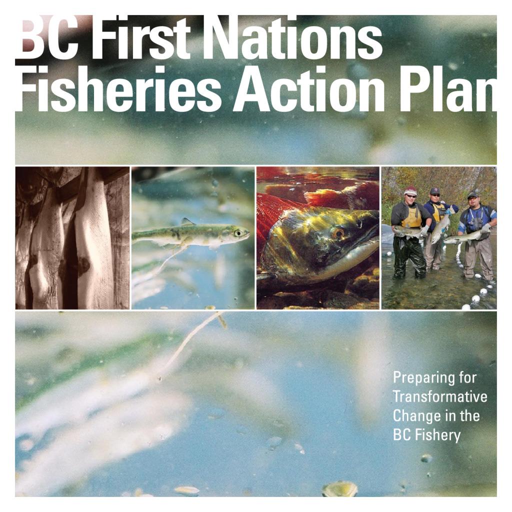 thumbnail of fnlc_fisheriesactionplan