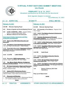 thumbnail of Draft February 2021 FNS Agenda – as at February 12 2021