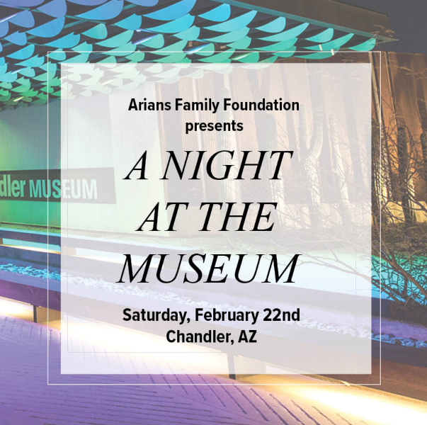 A Night at the Museum for Voices for CASA Children