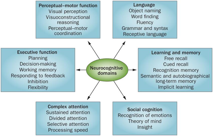 Neurocognitive-domains-The-DSM-5-defines-six-key-domains-of-cognitive
