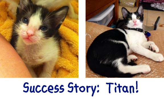 2013-10-16 Titan before and after