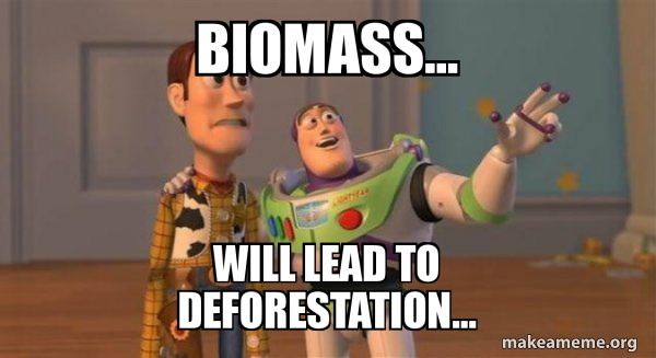 biomass-will-lead
