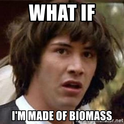 what-if-im-made-of-biomass
