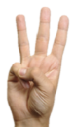 Fingers 3