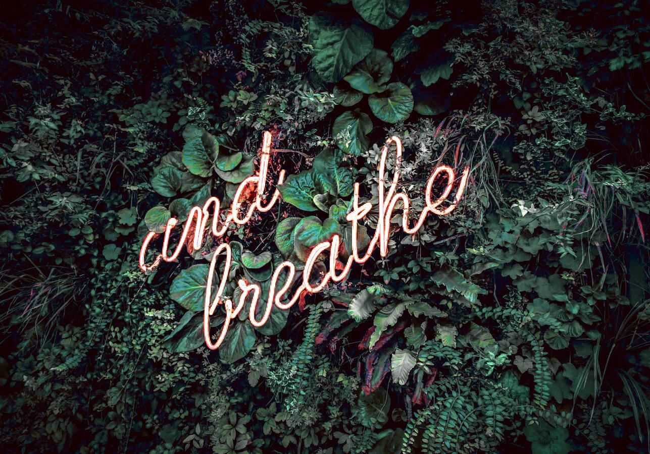 breathv