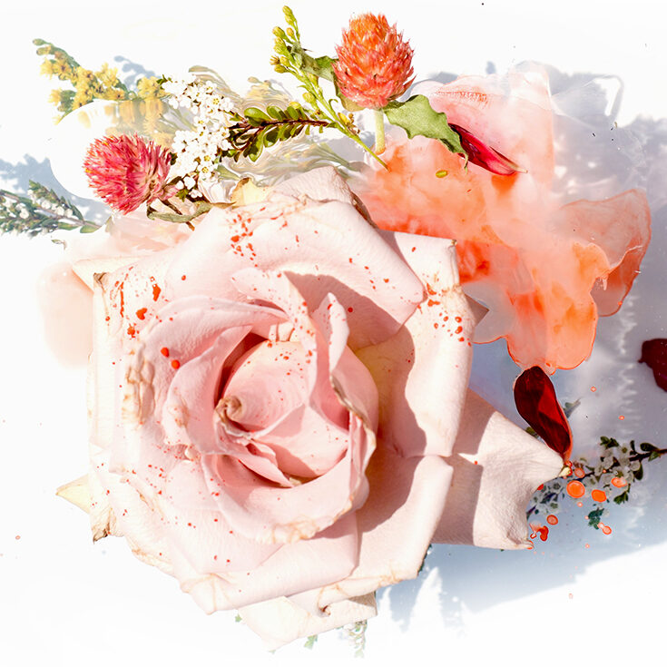 rosehipoilpost