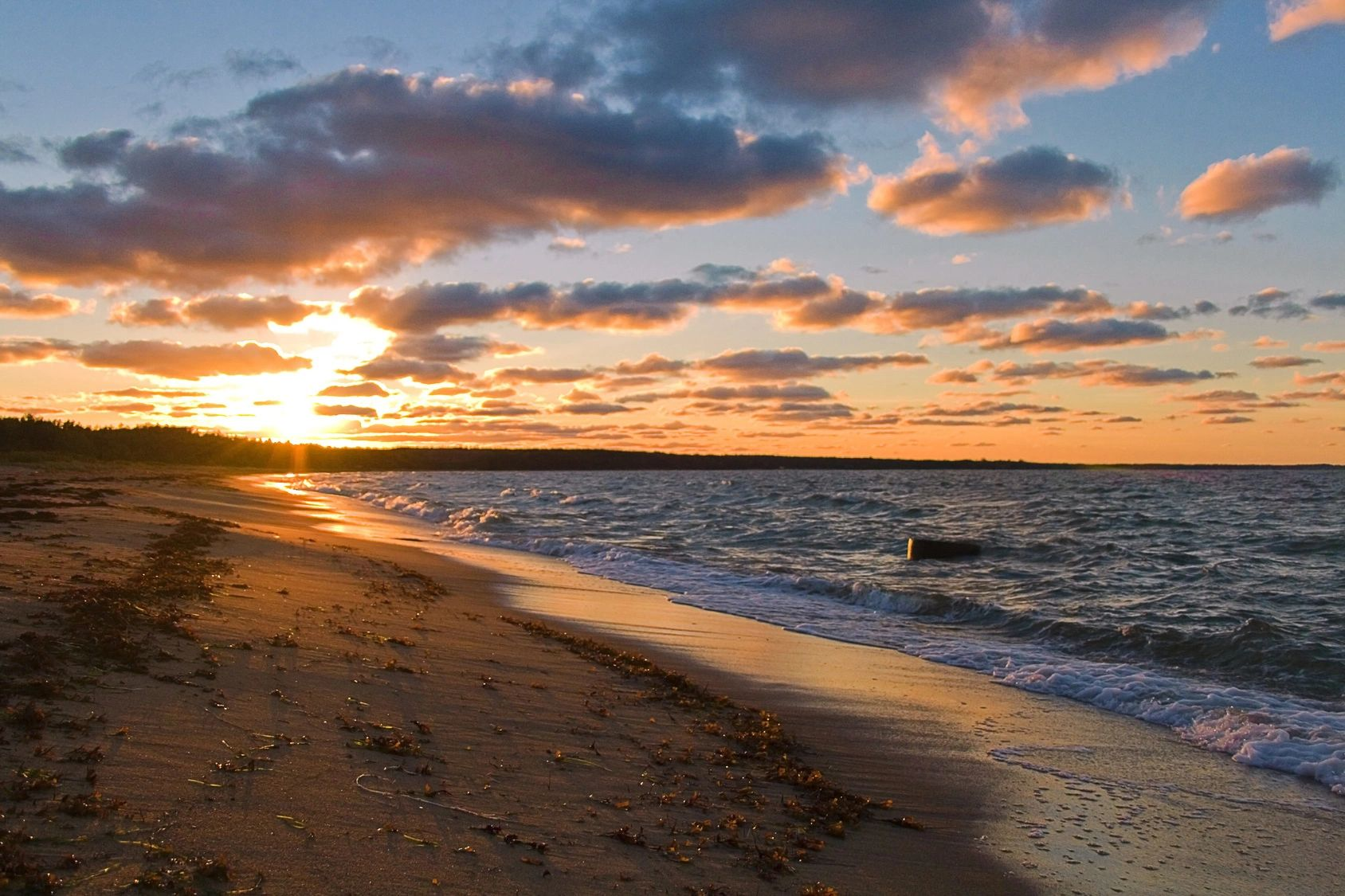 Rumba on the beach