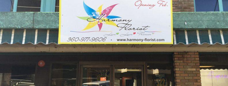 Harmony 2 web