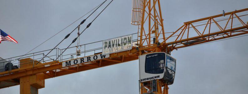 Pavillion Crane Banner web