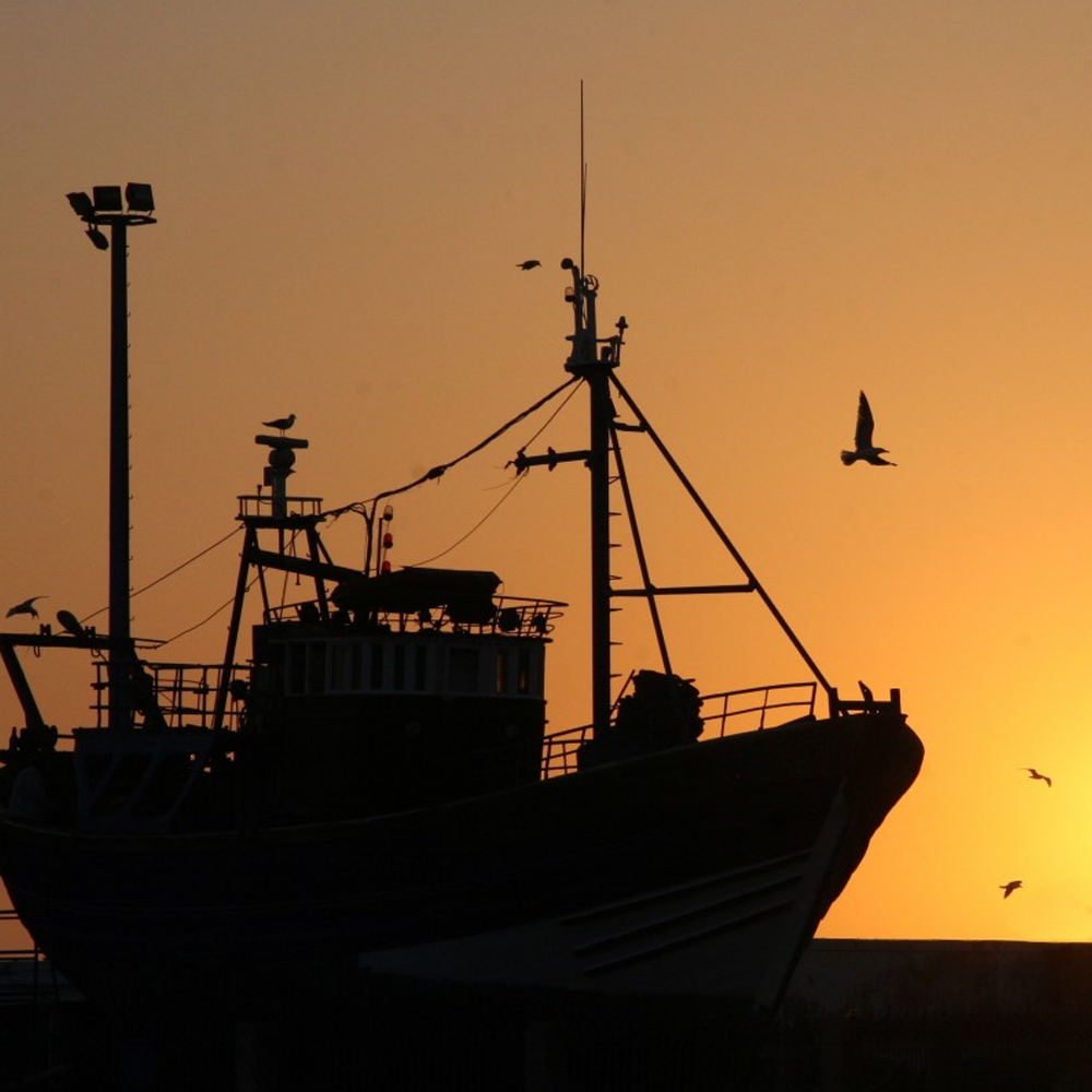 A ship docked at sunset.