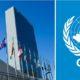 Conoce el origen del Día de las Naciones Unidas