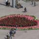 El gobierno de la CDMX realizó una exposición floral en el Zócalo para conmemorar el día dle amor y la amistad