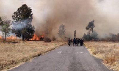 Incendio, Xochimilco, Claudia Sheinbaum, Sheinbaum, Provocado, Producido, Culpa de, Ganaderos, alcaldía,