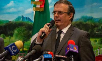 Ebrard OEA