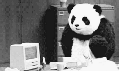 Embajador, Panda, Christopher Landau, México, Problema, EMisión, Visas,
