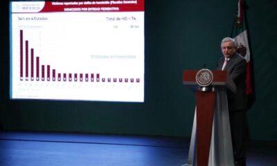 Cártel de Santa Rosa de Lima 'se dejó crecer' en Guanajuato, señala AMLO
