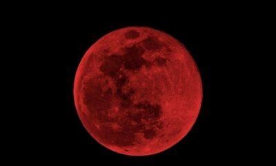 Desde dónde se apreciará mejor el eclipse lunar este 5 de junio
