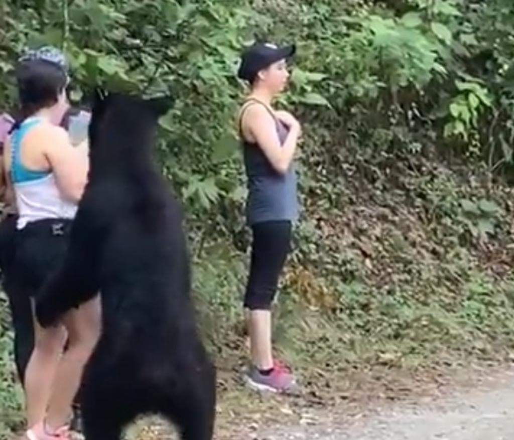 Sanjuana Martínez construye mentiras, acusa alcalde de San Pedro sobre castración de oso