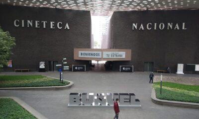 """""""Cineteca te extraña""""; recibe el recinto a cinéfilos con medidas sanitarias"""